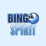 Bingospirit Casino Site